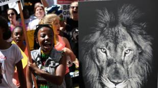 Militantes protestam na abertura da Convenção sobre o comércio internacional de espécies da flora e fauna selvagens em perigo de extinção.