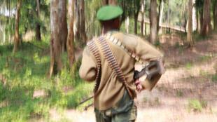 Un soldat des Forces armées de la RDC en tournée d'inspection et de sécurisation, le 6 janvier 2015 au Nord-Kivu. .