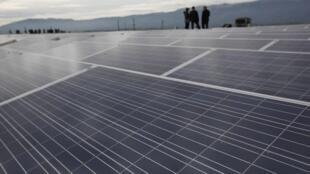 Chineses são líderes mundiais na produção de painéis solares.