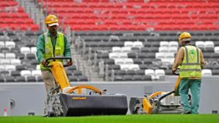 Des ouvriers sur la pelouse du stade Al-Bayt à Doha, la capitale du Qatar, qui accueillera la Coupe du monde de football en 2022.