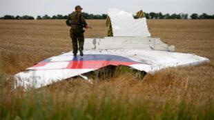 被擊落的馬航班機殘骸,一名叛軍踩着飛機機翼。