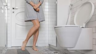 Les urines - toilettes