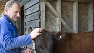 Michael, un fermier pro Brexit à Burwash Manor farm dans le Cambridgshire.