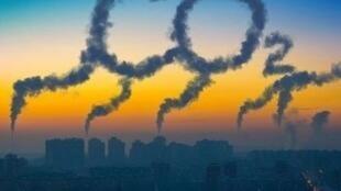 關於碳排放報道圖片