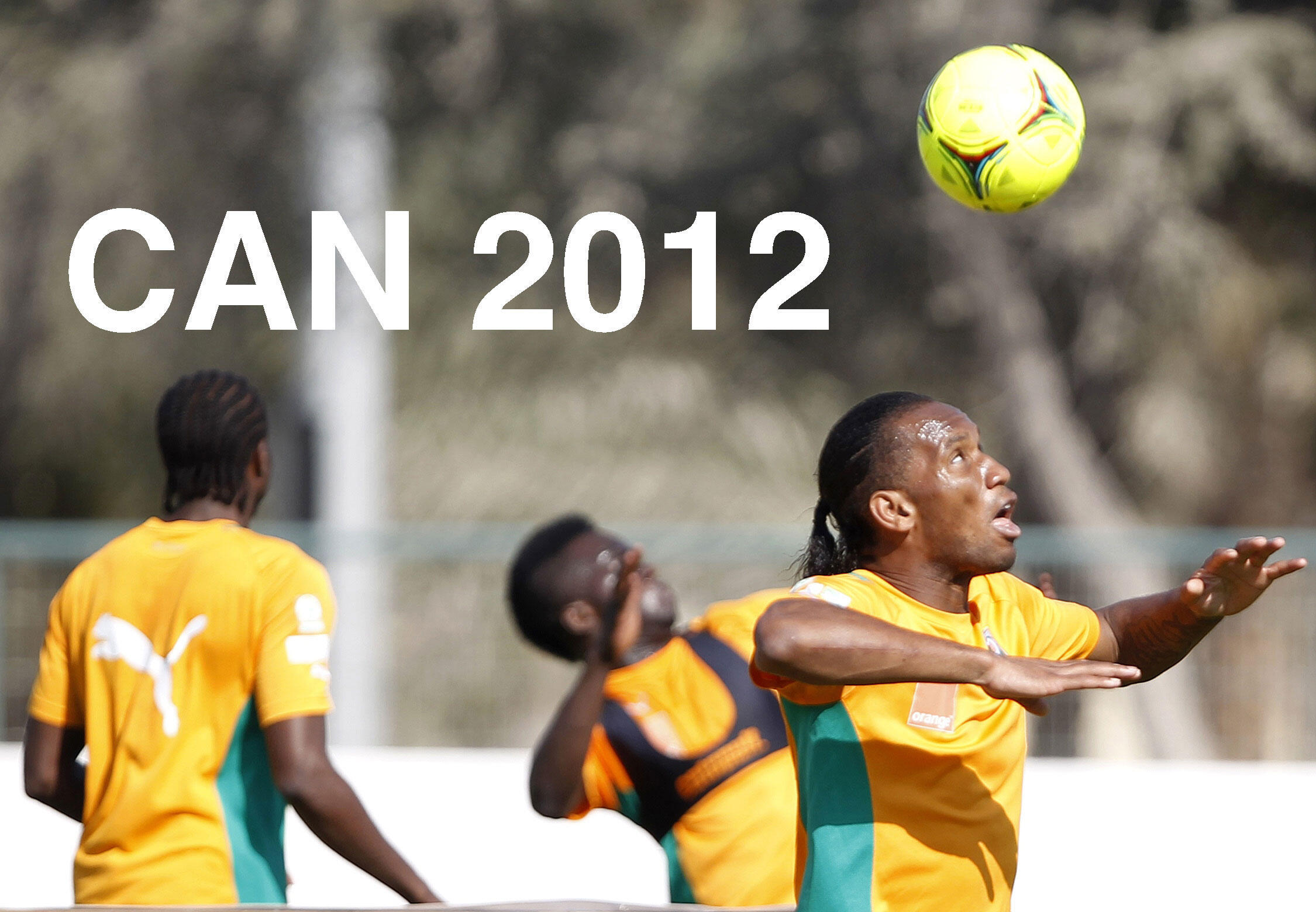 Dossier: Africa Cup of Nations 2012