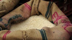 Depuis le mois d'avril 2008, l'Inde ne pouvait exporter de riz au-delà de ses frontières.
