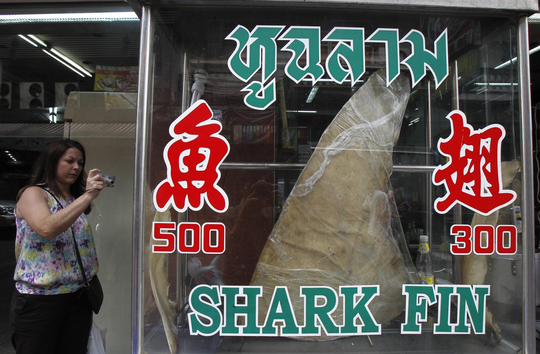Vi cá mập trưng bày trước một nhà hàng ở Bangkok. Ảnh chụp ngày 05/03/2013.