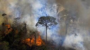 In this photo taken on August 15, 2020, smoke rises from an illegally lit fire in an Amazon rainforest reserve, south of Novo Progresso in Para state, Brazil