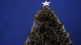 O Pinheiro de Natal é uma tradição com origem em costumes pagãos.