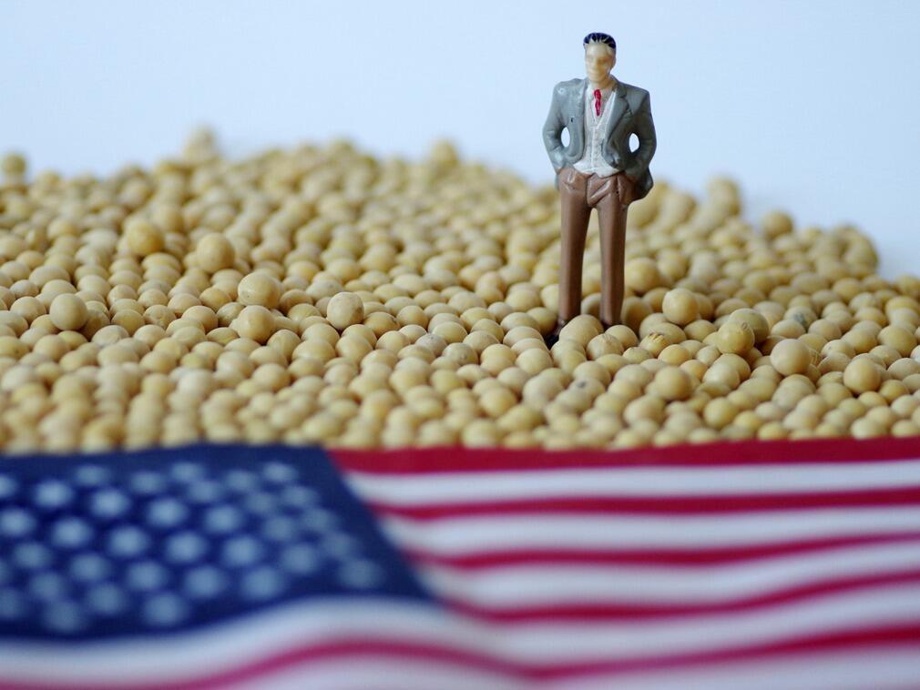 圖為中美大豆貿易示意圖