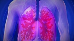 La principale cause est la fumée de tabac.