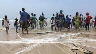 Pêche à la senne plage de Camberene (Dakar, Sénégal). Une pêche intense, longue. Et pour un maigre résultat.