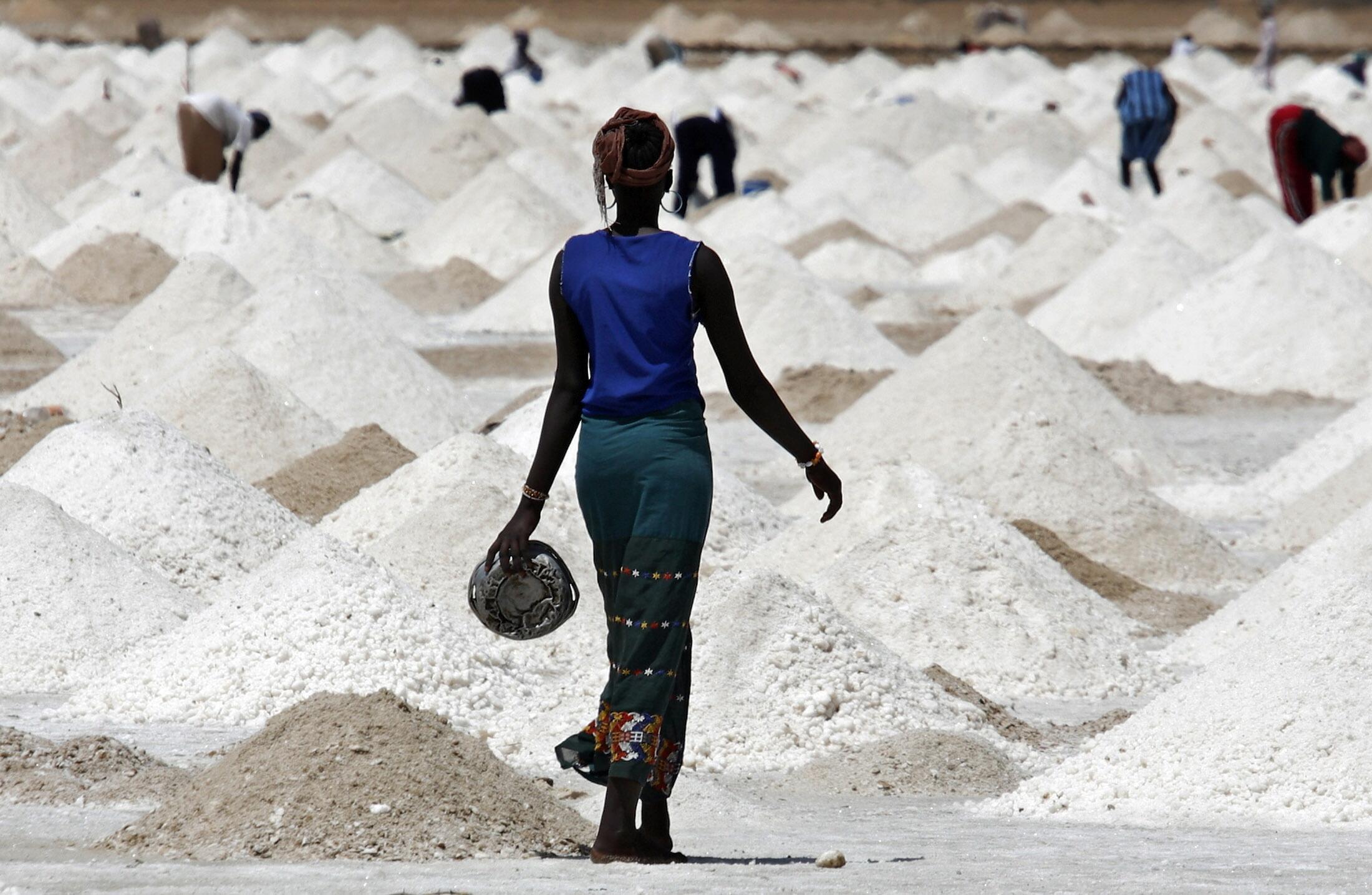 Des femmes extraient le sel près de la ville de Saint-Louis au Sénégal.