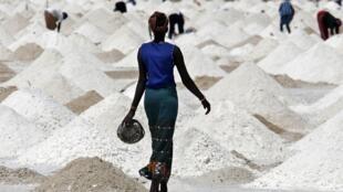 Des femmes extraient le sel au Sénégal