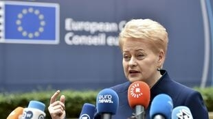 Iron Lady: Dalia Grybauskaite, the out-going president of Lithuania, tipped for a top job in Europe.