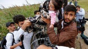 Un Syrien fait passer une fillette par-dessus les fils barbelés installés à la frontière hongroise, ce mercredi 26 août.