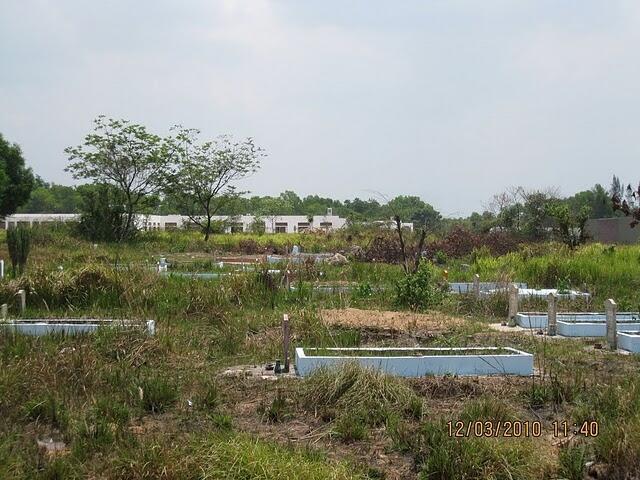 Khu nghĩa địa trước cơ sở mới của trường Colette-TP Hồ Chí Minh