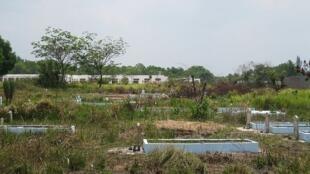 Khu nghĩa địa trước cơ sở mới của trường Colette-TP Hồ Chí Minh.