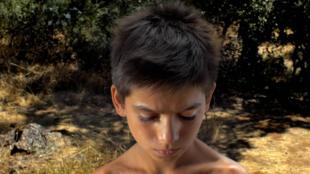 Farpões baldios, a realidade camponesa do sul de Portugal entre a nova e a velha geração