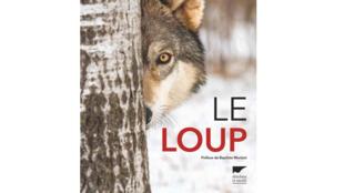 Couverture «Le loup», de Jean-Marc Landry.
