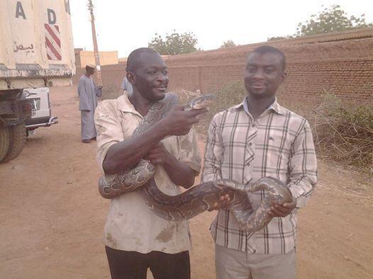 Wani mai wasa da Dabbobin Dawa a Sudan