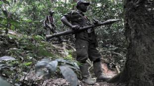 Rebelles rwandais hutus des FDLR le 6 février 2009 à 150km au nord-ouest de Goma.