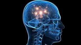 A doença de Parkinson resulta nomeadamente da morte progressiva de neurónios.