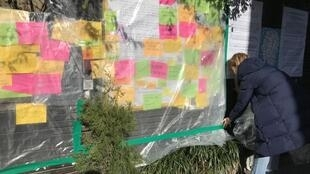 Une étudiante coréenne protège avec un film plastique les messages de soutien au mouvement hongkongais suite à leurs arrachages par des étudiants chinois.