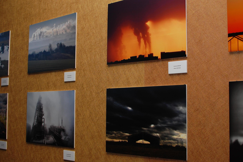 Работы участников конкурса «Мой кадр в защиту природы»