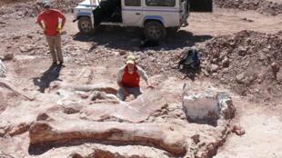 Paleontólogos junto a hueso fémur