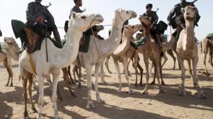 Des méharistes de la garde nationale mauritanienne à Nema dans le sud-esy de la Mauritanie le 23 novembre 2018.