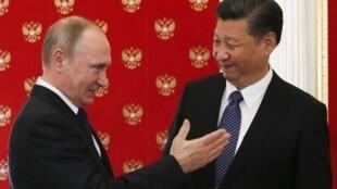图为中国国家主席习近平与俄罗斯总统普京