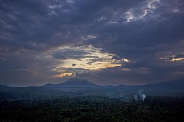 Le parc national des Virunga, secteur sud, région de Rumango, en 2008.