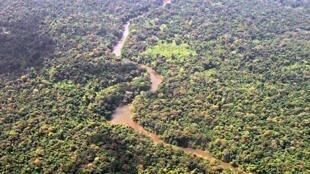 Une vue de la réserve de Bosawas, au Nicaragua (image d'illustration)