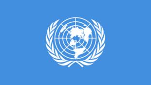 聯合國 標識