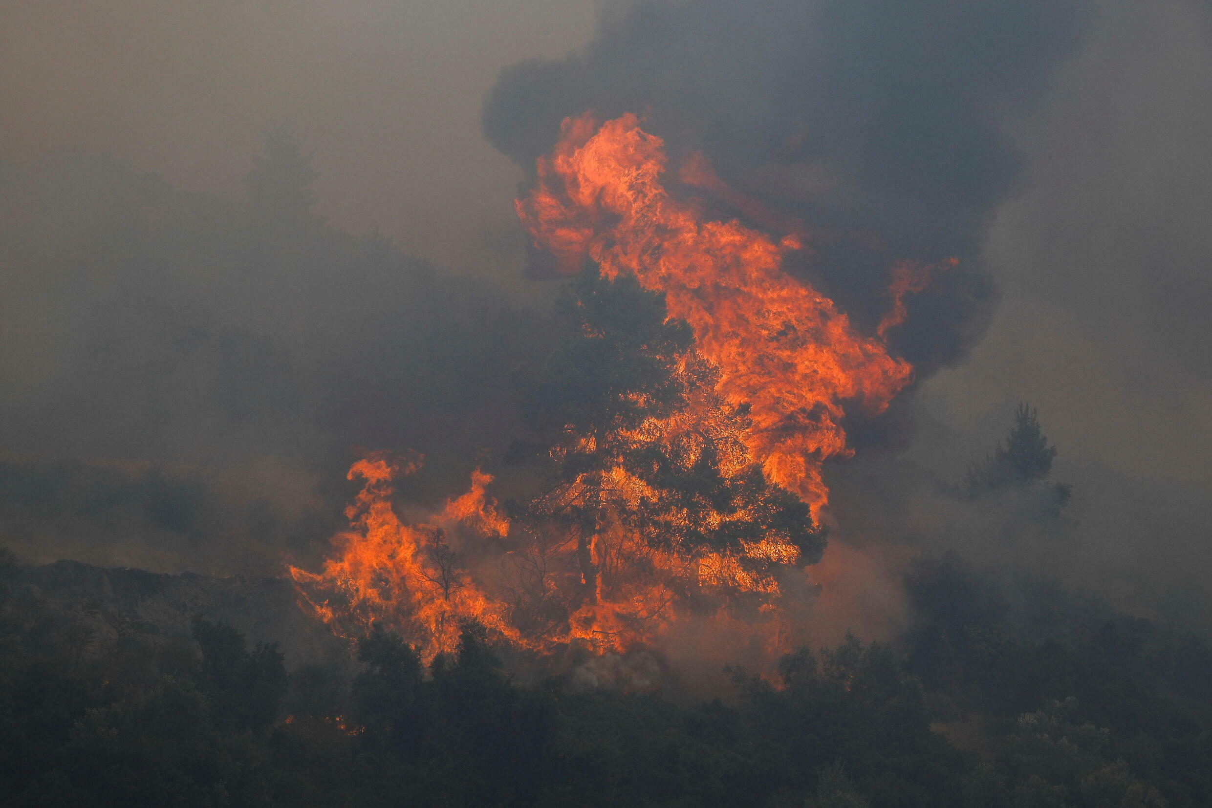 2021-08-06T090456Z_1696688571_RC2JZO9FVSA8_RTRMADP_3_EUROPE-WEATHER-GREECE-WILDFIRES