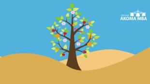 L'arbre à merveilles