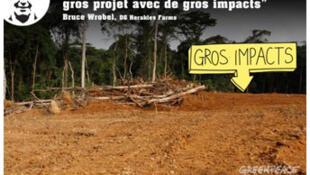 Campagne de Greenpeace contre le projet d'Herakles Farms.