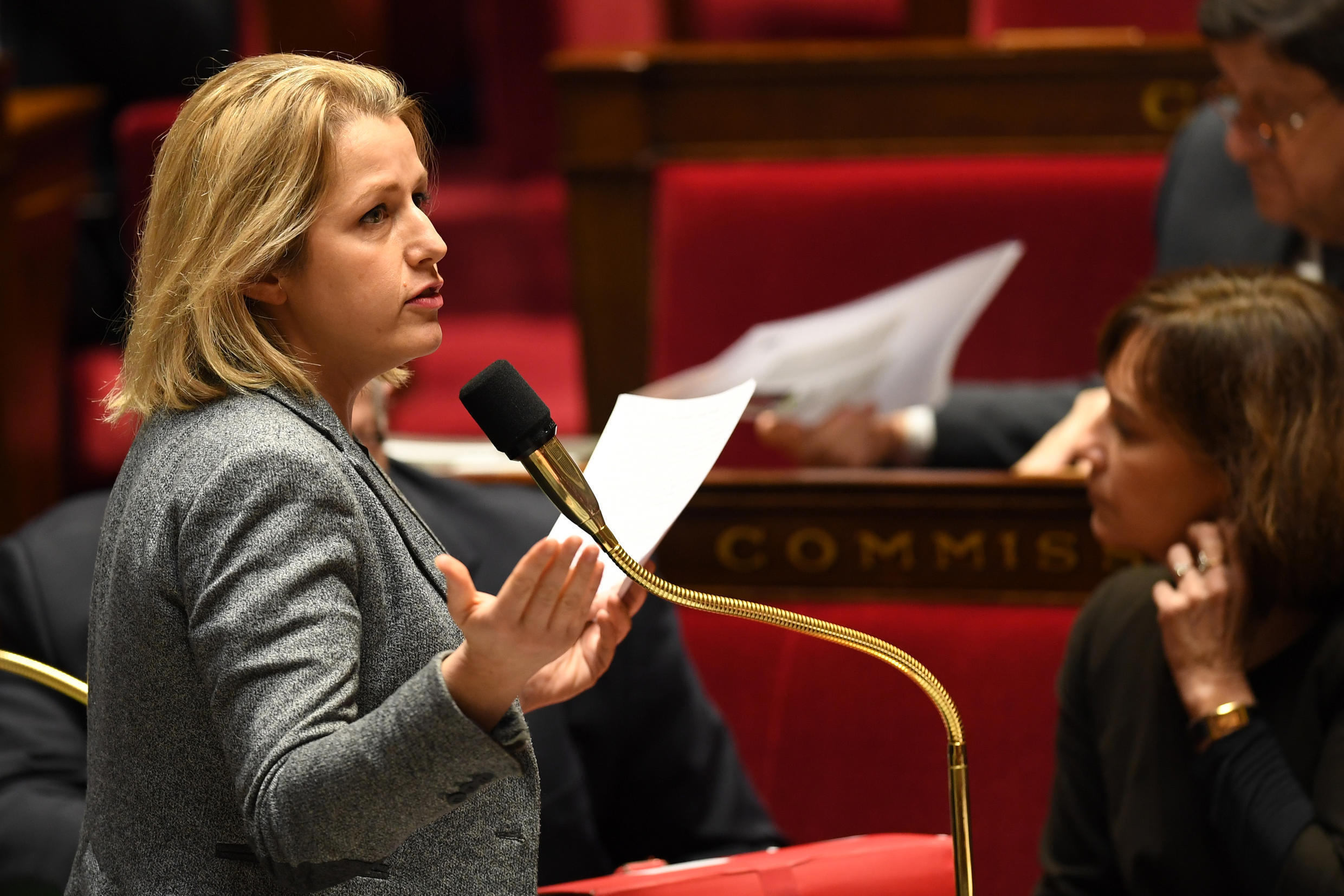 Barbara Pompili, France's new Environment Minister, speaks in parliament.