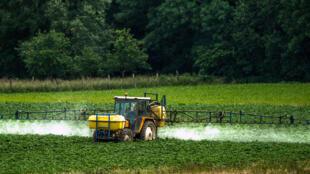 Pulvérisation de pesticides dans un champ, à Bailleul, France. Photo datée de juin 2015.
