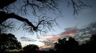 Coucher de soleil à Selous, réserve naturelle située au sud de la Tanzanie, le 2 septembre 2007.