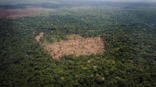 Vue aérienne de parcelles déforestées en Amazonie (photo d'illustration).