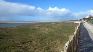 La Faute-sur-Mer, plage de la Belle Henriette, la dune 10 ans après Xynthia.