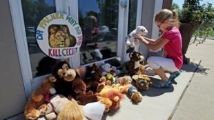 Pour protester, des manifestants ont déposé des dizaines d'animaux en peluche sur le pas de la porte de Walter Palmer, qui a reconnu avoir tué le célèbre lion Cecil.