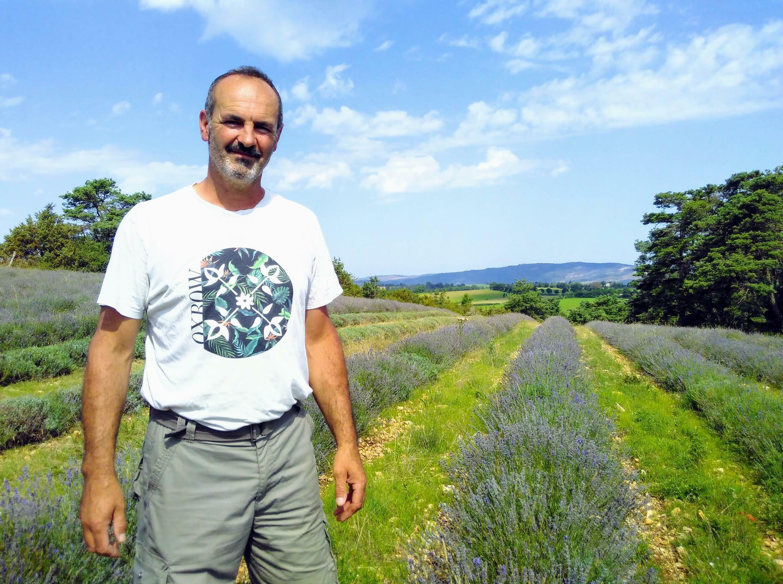 Laurent Fages lavender