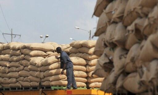 Dans un entrepôt de cacao, près du port d'Abidjan, en Côte d'Ivoire.