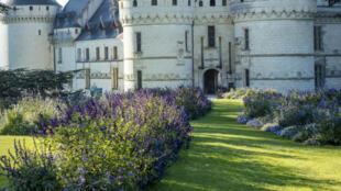 Le domaine de Chaumont-sur-Loire.