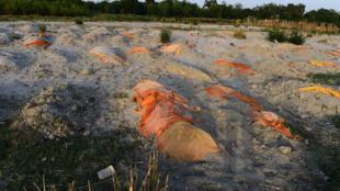 Tumbas de víctimas del covid-19, excavadas a orillas del río Ganges en Unnao, India, el 13 de mayo de 2021