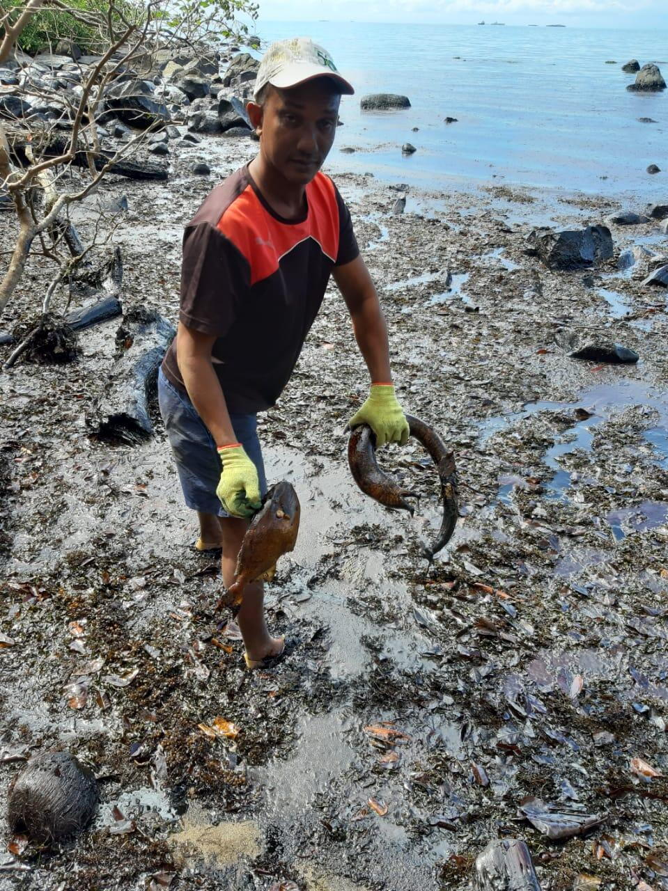 Fisherman Baretta Matombe found dead fish at Falaise Rouge following the oil spill in Mauritius. He fears it will be years before he will be able to fish again.
