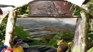 Biodiversidade em São Tomé e Príncipe